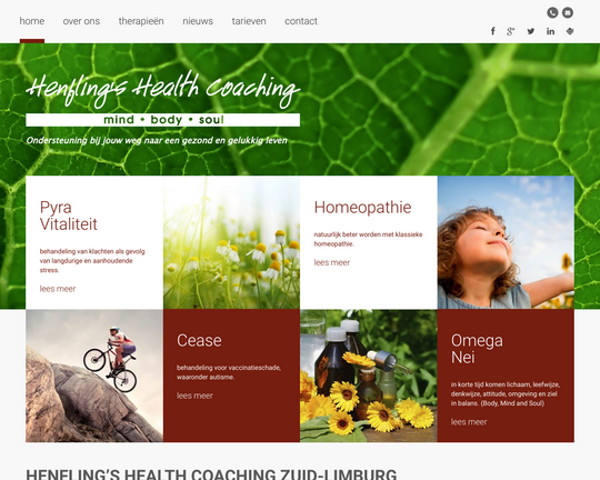 Henflings Health Coaching